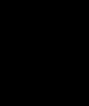 ICCS Logo #2 Black on Transparent Background - 300px