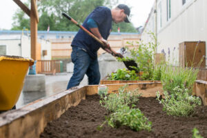 Volunteer Planting Herbs at Newcastle